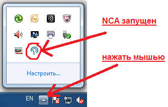 NCA Layer в трее