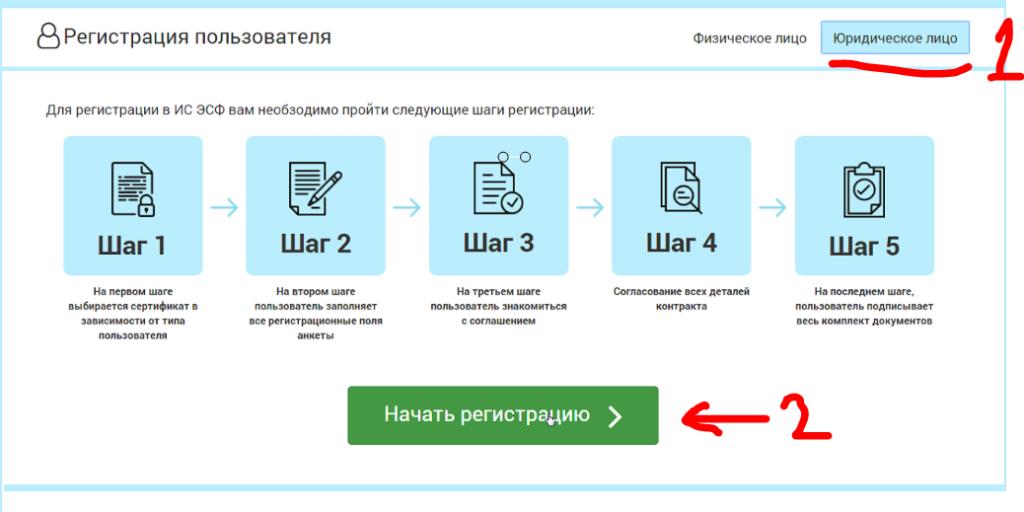 Регистрация юр лица ЭСФ