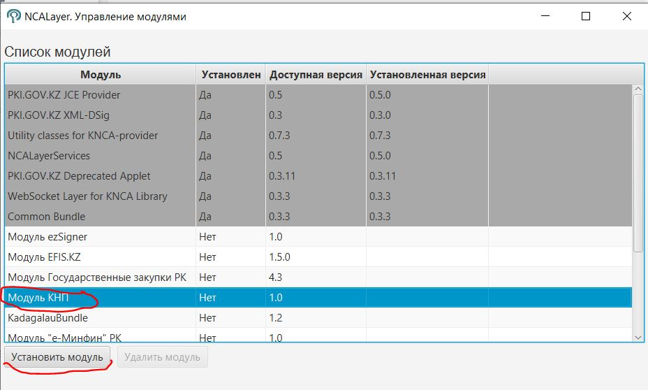 Установка модуля КНП в NCA Layer
